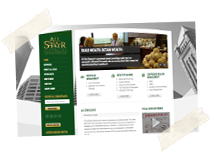 All Star Financial: Wordpress Website Design, Social Media Account Branding, Newsletter Design
